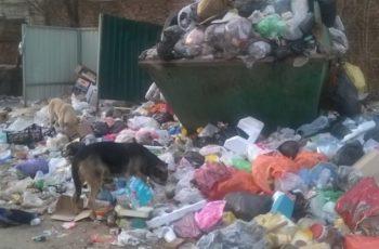 Кучи мусора в городе Астрахань, ноябрь 2016.