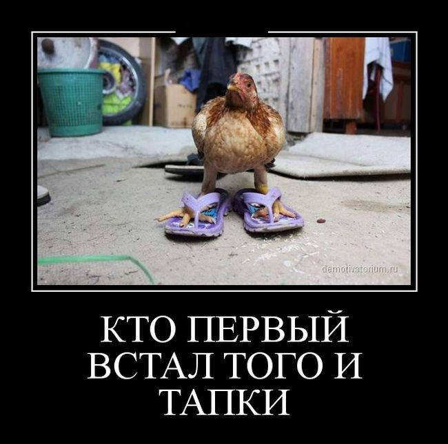 Кто первый встал, того и тапки. (с) demonitvatorium.ru