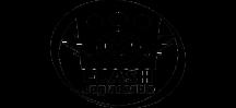 Логотип обновляемой прошивки Celestron.